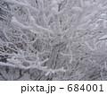 雪に覆われた木の枝 684001