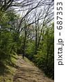 遊歩道 山道 歩道の写真 687353