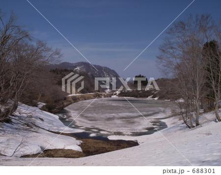 写真素材: 春先の池