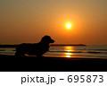 九十九里浜の朝日とダックス 695873