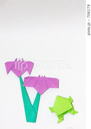 ハート 折り紙 菖蒲 折り紙 : pixta.jp