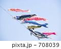 コイノボリ 鯉幟 こどもの日の写真 708039