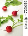 根菜 ラディッシュ ハツカダイコンの写真 723059