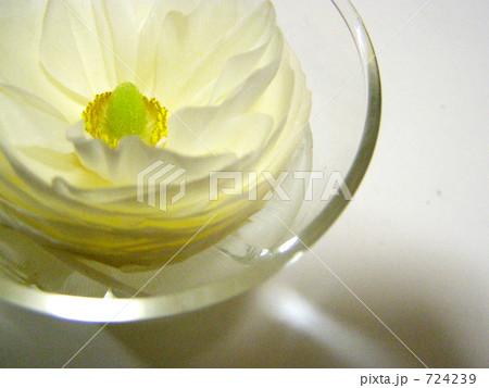 水面の開花 724239