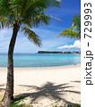 南の島 椰子 恋人岬の写真 729993