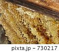 日本蜜蜂巣箱 730217