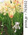 クマの冒険 763602