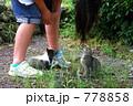少女と仔猫 778858