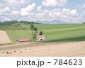 美瑛町 赤い屋根の家 784623