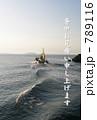 江ノ島 789116