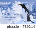 暑中見舞い(ペンギン) 789214