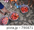 田植え後の振る舞い 完熟トマト 790871