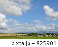美瑛ファームズ千代田での風景 825901