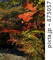 秋の色 873057