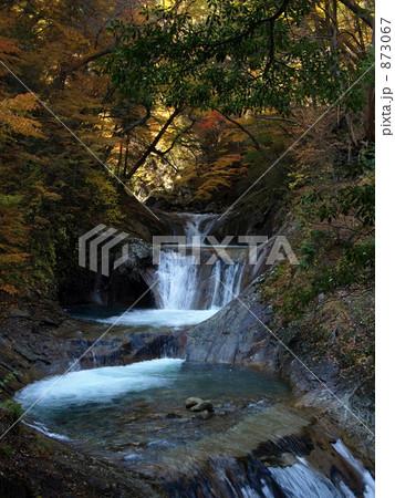秋の色 873067