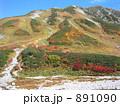 紅葉 立山 891090