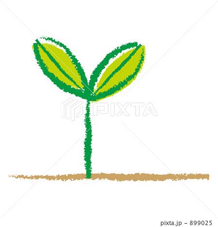 芽のイラスト素材 [899025] - PI...