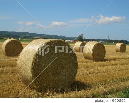 牧草ロール 900892
