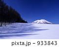 岩手山 樹影 雪原の写真 933843