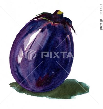 加茂茄子のイラスト素材 961493 Pixta