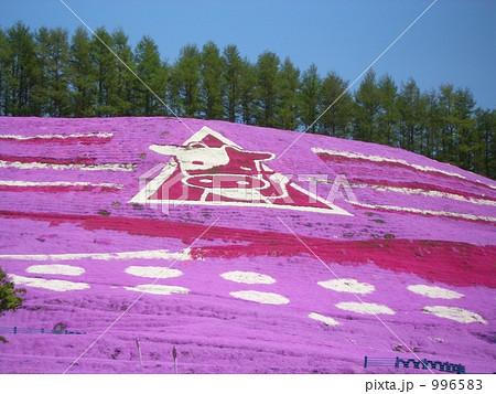 東藻琴の芝桜 996583