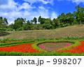 ハートの花壇 998207