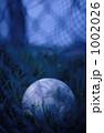 グラウンド脇のサッカーボール 1002026