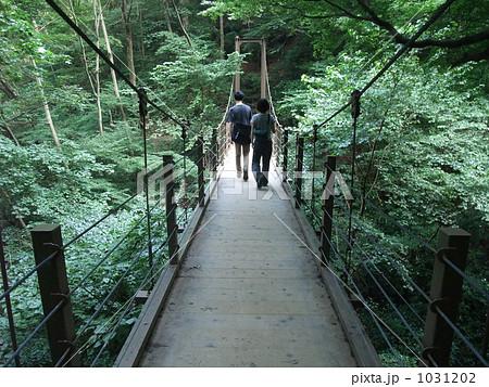高尾山 みやま橋の写真素材 [103...