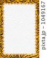 タイガーポップ.フレーム. 1049167