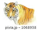 トラの上半身の水彩画 1068938