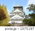 大阪城天守閣正面 1075197