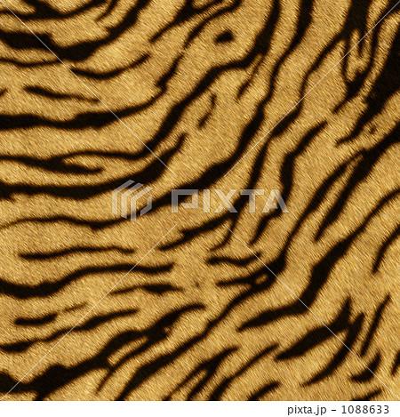 トラ柄 実写より使える、超高解像度リアルCG 1088633