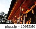 本殿 八坂神社 神社の写真 1093360