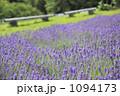 フラノ 彩香の里 富良野の写真 1094173