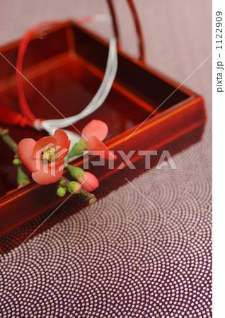 スタジオヴェリタス写真販売季節イメージ