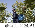 農業 りんご 1126165