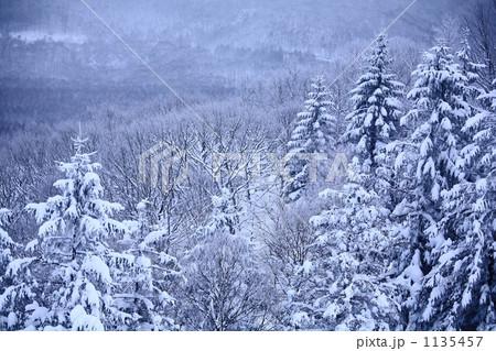 冬山 1135457
