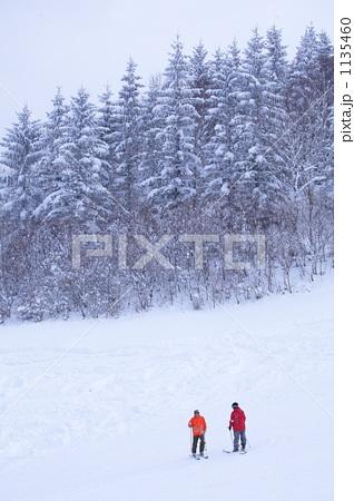 白、木、スキー 1135460