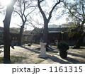 北京のお寺・境内 1161315