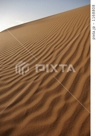 サハラ砂漠の風紋 1168808