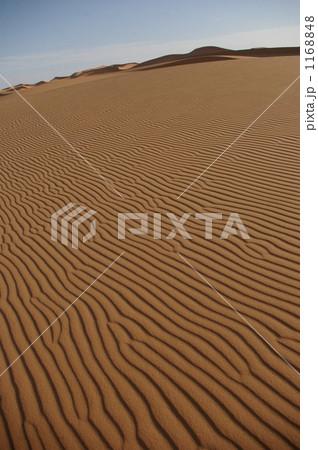 サハラ砂漠の風紋 1168848