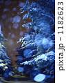 雪降る並木道 1182623