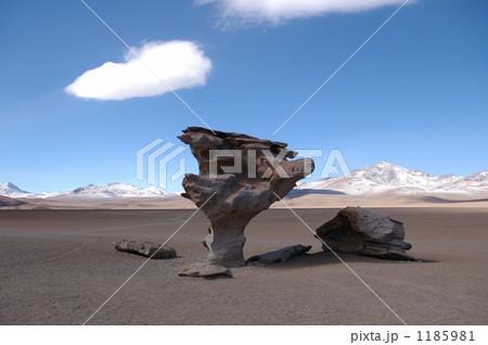 ダリの砂漠 1185981