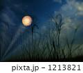 秋風一夜百千年 1213821