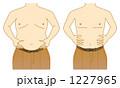 太った 脂肪 ベクターのイラスト 1227965