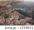 吉野山遠景 1259631