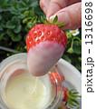 練乳 コンデンスミルク フルーツの写真 1316698