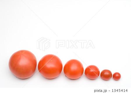 トマトの行列 1345414