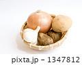 根菜 にんにく 野菜の写真 1347812
