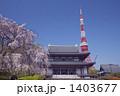 寺院 増上寺 東京タワーの写真 1403677